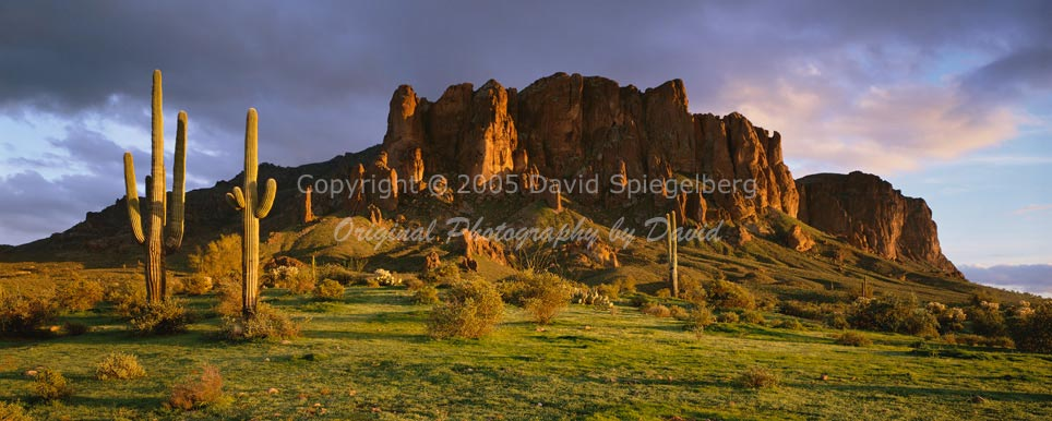 ARIZONA PHOTOGRAPHY BY DAVID MUENCH, TEXT BY BARRY GOLDWATER 1978, BRAND NEW